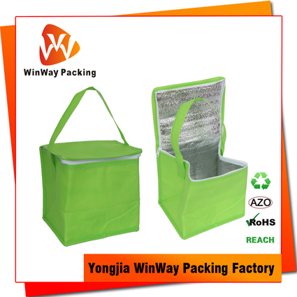 ICE-046 Cheap Price Zipper Closure Reusable Non-Woven Cooler Bag